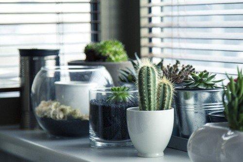best Energy Efficient Window Treatments